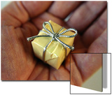 Tiny Present in a Mans Palm