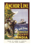 Anchor Line Poster for Ship Travel Between Gibraltar  Egypt and India with an Elephant