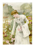A Young Woman Picks Flowers in a Country Garden  and Stores Them in Her Apron
