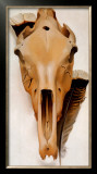Mule Skull and Feathers