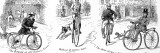 Three Types of Bicycle  1880