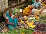 Street Market at Matiari  West Bengal  India