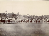 A Group of Indian And  One Presumes  British Polo Players Line Up on the Field in India