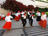 Dancers from Campanario  in Funchal  Madeira