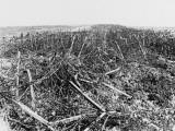 Battles of Arras 1917