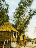 Philippines - Manila - Traditional Bamboo Stilt Houses