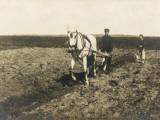 Russian Farm Workers