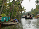 Boats in the Alleppey Backwaters  Kerala  India