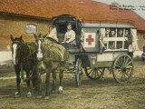 Horse Ambulance at Beverloo Training Camp  Belgium