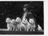 Mrs Pacey  Breeder and Judge  with Five of Her 'Wolvey' West Highland White Terriers