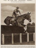 Miss Dorothy Paget's Golden Miller in Action