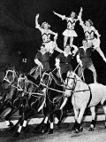 Equestrian Acrobats at the Circus  1948