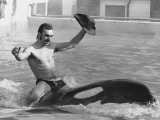A Man with a Cowboy Hat Rides a Killer Whale