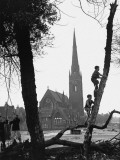 Boys Swing on and Climb Trees in Manchester