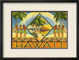 Hawaii Brochure  1943