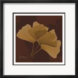 Color Me Ginko Brown I
