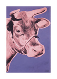 Cow  c1976 (pink and purple)