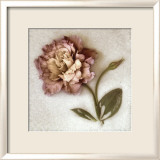 Sand Lisianthus
