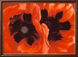 Oriental Poppies  c1928