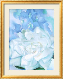 White Rose W/ Lakspur No2