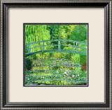 The Water Lilly Pond  Green Harmony