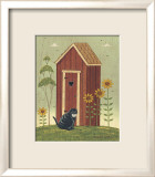 Outhouse with Cat