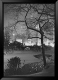 Winter at Night  New York  Central Park
