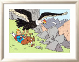 Tintin and the Condor