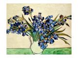 Iris dans un vase Giclée par Vincent Van Gogh
