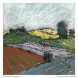 Pastel Fields V
