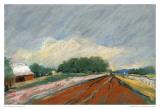 Pastel Field II