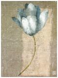 Tulipe Bleue I