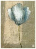 Tulipe Bleue II