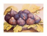 Still Life of Figs