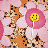 Happy Face Lollipop on Retro Flowers
