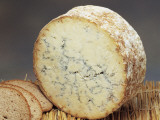 Close-Up of Cheese (Stilton)