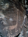 Detail of Native American Petroglyph