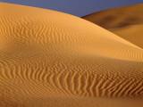 Usa  California  Algodones Dunes  Sand Dunes in the Desert