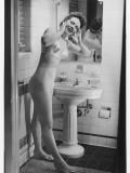 Woman in Lingerie Posing in Bathroom