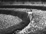 Woman Walking on Flowerbed  (B&W)