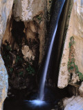 View of Darwin Falls in Panamint Valley  Mojave Desert  Bureau of Land Management  California
