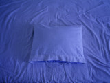 A Pillow Lying on a Creased Sheet