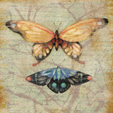 Vintage Butterflies II
