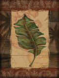 Tropical Leaf I