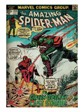 Marvel Comics Retro: The Amazing Spider-Man Comic Book Cover 122  the Green Goblin (aged)