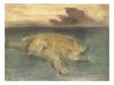 un ilôt en pleine mer