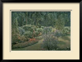 Arboretum Pathway