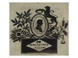 """""""Bonaparte à Lyon"""": tableau tissé dans un cadre noir et doré"""
