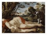 Adonis mort et son chien