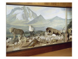 Diorama du Mont Kenya